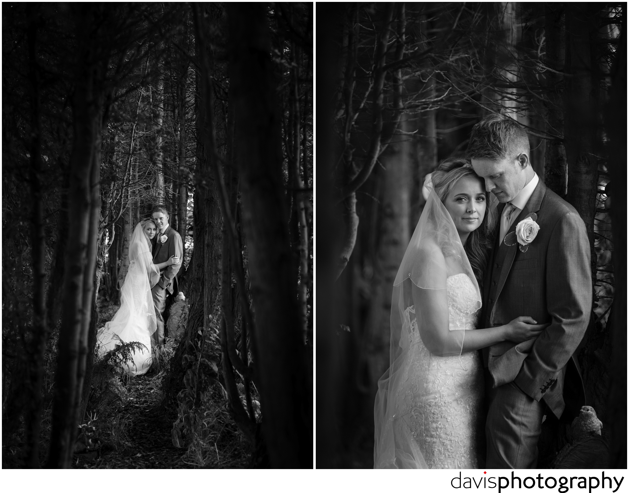 tunnel of trees surround couple